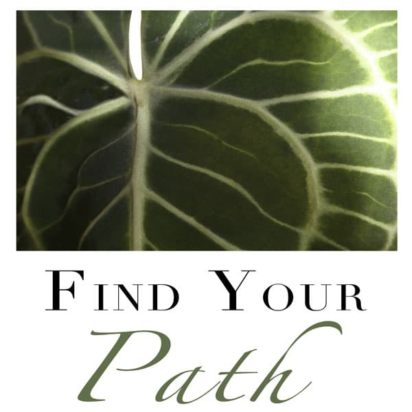 Life Coaching - Find Your Path